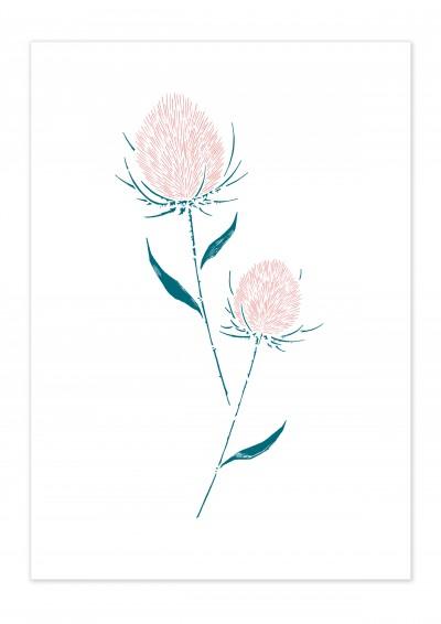 Plants Thistle Poster